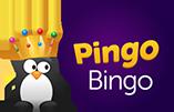 PingoBingo